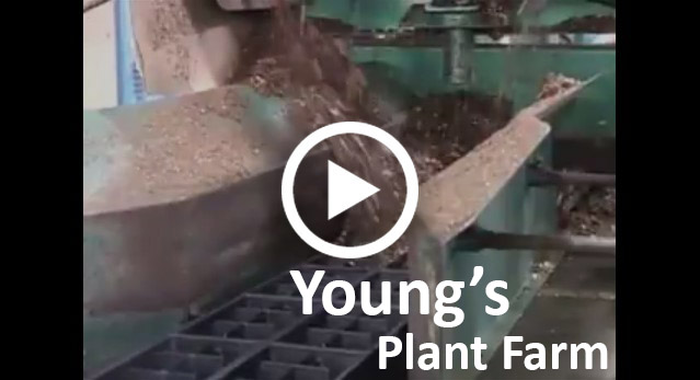 Young's Plant Farm Success Story video